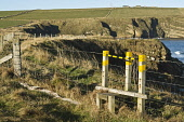 Footpath stile on seacliff foot path  SOUTH RONALDSAY ORKNEY  Picture Credit: D. Houghton / Scottish Viewpoint Tel: +44 (0) 131 622 7174   Fax: +44 (0) 131 622 7175 E-Mail : info@scottishviewpoint.com... Public scotland,footpath,stile,seacliff,foot,path,orkney,uk,on,south,ronaldsay,stiles,coastal,footpaths,walking,paths,track,walk,trails,pathway,trail,pathways,tracks,right,way,freedom,roam,sea,cliff,top,clif