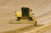 A combine harvester, Scottish Borders Picture Credit : Jason Baxter / Scottish Viewpoint Tel: +44 (0) 131 622 7174   Fax: +44 (0) 131 622 7175 E-Mail : info@scottishviewpoint.com This photograph can n... Public field,agriculture,harvesting,rural,grain,crops,yellow,machinery,machine,wheat,barley,crop,agricultural,farm,farming,arable