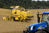 A combine harvester and a tractor, Scottish Borders Picture Credit : Jason Baxter / Scottish Viewpoint Tel: +44 (0) 131 622 7174   Fax: +44 (0) 131 622 7175 E-Mail : info@scottishviewpoint.com This ph... Public field,agriculture,harvesting,rural,grain,crops,yellow,machinery,machine,wheat,barley,crop,agricultural,farm,farming,arable