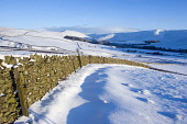 Ettrick Valley, Scottish Borders. Picture Credit : Jason Baxter / Scottish Viewpoint Tel: +44 (0) 131 622 7174   Fax: +44 (0) 131 622 7175 E-Mail : info@scottishviewpoint.com This photograph can not b... Public winter,landscape,scenic,serene,beautiful,scenery,light,contrast,snowy,snow,cold,sunny,hill,hills,drystone wall