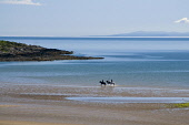 Beach Trek or hacking on the beach Brighouse Bay, Dumfries and Galloway. Picture Credit: Allan Wright / Scottish Viewpoint Tel: +44 (0) 131 622 7174   Fax: +44 (0) 131 622 7175 E-Mail : info@scottishv... Public adventure,azure,bay,beach,beautiful,blue,blue sky,breezy,bright,clear,coast,crisp,crystal clear,cumbria,dry,dumfies and galloway,Dumfries & Galloway,England,estuary,hack,hacking,high pressure,horizon,