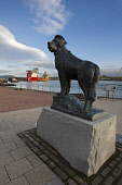 The larger than life-size bronze statue of Bamse at Montrose Harbour.  Bamse was a huge St. Bernard dog who lived during the 2nd World War.  Bamse was owned by Captain Hafto of the Norwegian Navy, and... Public Montrose,Angus,harbour,Bamse,Navy,minesweeper,boats,ships,legendry,Norwegian,adventures,courage,stationed,sculpture,statue,sea,mines,industry,tourism,St Bernard,dog,memory,South Esk