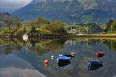 Moored yachts and boats on Bishop's Bay, Loch Leven, Highlands, Scotland Picture Credit: Allan Coutts / Scottish Viewpoint Tel: +44 (0) 131 622 7174   Fax: +44 (0) 131 622 7175 E-Mail : info@scottishv... Public Glencoe,Loch Leven,bishops bay,amusing,Bishop�s Bay,boating,boats,color,image,contemporary,day,geography,geology,Highland,horizontal,landscape,leisure,lochs,moored,nature outdoors,photography,recreati