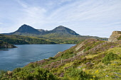 Loch a' Chairn Bhain looking towards Sail Gorm, from Kylestrome, Sutherland District, Highland. Picture Credit: D.G.Farquhar / Scottish Viewpoint Tel: +44 (0) 131 622 7174   Fax: +44 (0) 131 622 7175... Public Mountains,Mountain,Highlands,water,hills,heather,sunny,summer