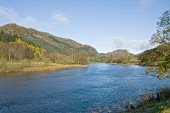 Loch Lubnaig, Stirling District. Picture Credit: D.G.Farquhar / Scottish Viewpoint Tel: +44 (0) 131 622 7174   Fax: +44 (0) 131 622 7175 E-Mail : info@scottishviewpoint.com This photograph cannot be u... Public Central,Fall Colors,GB,Great Britain,Landscape,Loch,Lochs,Scotland,Season,Seasons,UK,United Kingdom,Weather,Loch Lubnaig,Stirling District,Autumn,Autumn colors,Autumnal,Britain,British,Climate,EU,Euro