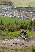 A mountain biker on Cadon Bank Mountain Biking trail above the town of Innerleithen, Scottish Borders. Picture Credit : Jason Baxter / Scottish Viewpoint  Tel: +44 (0) 131 622 7174  Fax: +44 (0) 131 6... Public spring,sunny,hills,valley,tweed,countryside,activity,cycling,black route,grade,severe,danger,stanes,seven,7,7stanes,trails,bike,bicycle