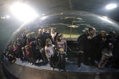 Visitors in the observation tunnel at Deep Sea World aquarium at North Queensferry, Fife, Scotland. Picture Credit : Gary Doak / Scottish Viewpoint  Tel: +44 (0) 131 622 7174  Fax: +44 (0) 131 622 717... Public aquarium,attraction,visitor,swimming,diver