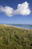 Bay of Lopness SANDAY ORKNEY Marram coastal grass dunes white sandy beach Picture Credit: Doug Houghton / Scottish Viewpoint Tel: +44 (0) 131 622 7174   Fax: +44 (0) 131 622 7175 E-Mail : info@scottis... Public marram,coastal,dunes,grass,remote,sandy,beach,afar,scotland,scottish,remoteness,isolation,isolated,far,away,faraway,get,getaway,empty,emptiness,deserted,desolate,peaceful,peace,quiet,tranquil,serene,s