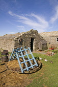 Farm Museum CORRIGALL ORKNEY Farmhouse buildings mill wheel farm implements three ducks in line Picture Credit: Doug Houghton / Scottish Viewpoint Tel: +44 (0) 131 622 7174   Fax: +44 (0) 131 622 7175... Public orkney,corrigall,farm,museum,scotland,scottish,farmhouse,homestead,dwelling,place,abode,farming,agricultural,agriculture,building,buildings,traditional,rural,agronomy,cultivate,historical,historic,his