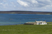 Ore bay HOY ORKNEY White cottage overlooking Fish farm cages Picture Credit: Doug Houghton / Scottish Viewpoint Tel: +44 (0) 131 622 7174   Fax: +44 (0) 131 622 7175 E-Mail : info@scottishviewpoint.co... Public orkney,hoy,ore,bay,scotland,scottish,country,life,countryside,side,outdoors,coastal,community,fishery,fishing,industry,remote,isolation,quiet,isolated,peace,peaceful,tranquil,fresh,air,serene,serenity