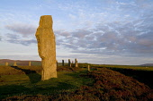 RING OF BRODGAR ORKNEY Neolithic standing stone henge circle with tourist looking at stones Picture Credit: Doug Houghton / Scottish Viewpoint Tel: +44 (0) 131 622 7174   Fax: +44 (0) 131 622 7175 E-M... Public orkney,ring,of,brodgar,brogar,standing,stones,scotland,scottish,stone,megaliths,menhirs,monolithic,henge,bronze,age,ancient,old,traditional,customs,cultural,unesco,world,heritage,site,archaeology,arch
