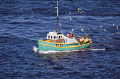 YESNABY ORKNEY Crab Lobster fishermens sailing between creels Picture Credit: Doug Houghton / Scottish Viewpoint Tel: +44 (0) 131 622 7174   Fax: +44 (0) 131 622 7175 E-Mail : info@scottishviewpoint.c... Public orkney,crab,lobster,fishermens,sailing,creel,boat,scotland,scottish,coastal,fishery,fishing,industry,outdoors,local,activity,activities,maritime,vessel,traditional,fishermen,fisher,men,crabs,fish,pots