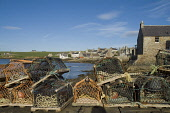 St Margarets Hope SOUTH RONALDSAY ORKNEY Lobster creels waterfront quayside harbour houses town Picture Credit: Doug Houghton / Scottish Viewpoint Tel: +44 (0) 131 622 7174   Fax: +44 (0) 131 622 7175... Public lobster,creels,waterfront,quayside,harbour,bay,scotland,scottish,crabs,fish,pots,seafront,harbor,fishing,shipping,shelter,haven,inlet,historic,history,historical,port,scenic,scene,maritime,buildings,h