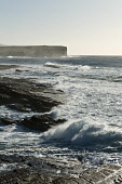 West rocky coast of Orkney surf waves coming ashore Bay of Skaill SANDWICK ORKNEY Picture Credit: Doug Houghton / Scottish Viewpoint Tel: +44 (0) 131 622 7174   Fax: +44 (0) 131 622 7175 E-Mail : info... Public west,rocky,coast,of,orkney,surf,waves,coming,ashore,bay,skaill,sandwick