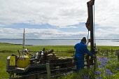 Low impact tracked fence post driver hydraulic post drive fencing post  FARMING ORKNEY Picture Credit: Doug Houghton / Scottish Viewpoint Tel: +44 (0) 131 622 7174   Fax: +44 (0) 131 622 7175 E-Mail :... Public farm,field,fence,post,driver,fencing,posts,low,impact,tracked,hydraulic,drive,farming,orkney,rural,economy,rustic,farms,fenced,barrier,wire,posting,pole,barbwire,tractors,machines,vehicles,tractor,mac