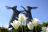 Sculpture in the rooftop garden, New Lanark, South Lanarkshire. Pic: Neil Sinclair / Scottish Viewpoint  Tel: +44 (0) 131 622 7174  Fax: +44 (0) 131 622 7175  E-Mail : info@scottishviewpoint.com  Web:... Public 2011,summer,sunny,attraction,history,heritage,industrial,world heritage site,conservation trust,unesco,river clyde,clyde valley tourist route,flowers