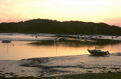 Kippford at sunset, Dumfries and Galloway. Picture Credit: Allan Wright / Scottish Viewpoint Tel: +44 (0) 131 622 7174   Fax: +44 (0) 131 622 7175 E-Mail : info@scottishviewpoint.com This photograph c... Public atmospheric,bay,beach,boat,boats,yacht,yachts,coast,coastal,estuary,moorings,mud,solway,firth,sundown,trees,urr,water