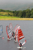 Windsurfing competition on St Mary's Loch in the Scottish Borders. Picture Credit : Jason Baxter / Scottish Viewpoint Tel: +44 (0) 131 622 7174   E-Mail : info@scottishviewpoint.com This photograph ca... Public 2011,summer,sunny,marys,mary,water,sport,watersport,activity,compete,sails,windsurf,hobby,enjoyment,trees,people,windsurfer,windsurfers