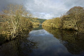River flowing in to Loch Ness at Foyers, Highlands of Scotland. Picture Credit : Allan Wright / Scottish Viewpoint Tel: +44 (0) 131 622 7174   E-Mail : info@scottishviewpoint.com This photograph canno... Public highland,hills,sunny,winter,trees,branches,water,reflection
