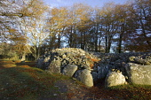 Clava Cairns, Highlands of Scotland. Picture Credit : Allan Wright / Scottish Viewpoint Tel: +44 (0) 131 622 7174   E-Mail : info@scottishviewpoint.com This photograph cannot be used without prior per... Public ancient,autumn,autumnal,bronze,age,circle,heritage,historic,leaves,attraction,chamber,tomb,corbelled,passage,sunny,cairn