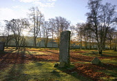 A standing stone at Clava Cairns, Highlands of Scotland. Picture Credit : Allan Wright / Scottish Viewpoint Tel: +44 (0) 131 622 7174   E-Mail : info@scottishviewpoint.com This photograph cannot be us... Public ancient,autumn,autumnal,bronze,age,circle,heritage,historic,leaves,attraction,chamber,tomb,corbelled,passage,sunny,cairn