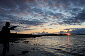 Midsummer fly fishing for trout on Harray Loch, Mainland, Orkney. Picture Credit : Mark Ferguson / Scottish Viewpoint Tel: +44 (0) 131 622 7174   E-Mail : info@scottishviewpoint.com This photograph ca... Public summer,isles,Game,Pursuit,Activity,Fisherman,Leisure,angler,atmospheric,silhouette