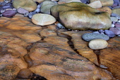 Rocks at Clashach Cove on the Moray Firth, Moray. Picture Credit : Peter Scott / Scottish Viewpoint Tel: +44 (0) 131 622 7174   E-Mail : info@scottishviewpoint.com This photograph cannot be used witho... Public 2011,summer,coast,coastal,atmospheric,detail,tecture,weathering,erosion,rock,rocks,stone,stones