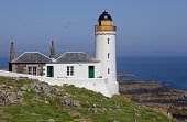 The Low Light lighthouse on the Isle of May, now used as a bird observatory, Firth of Forth. Picture Credit : Ian Macrae Young / Scottish Viewpoint   Tel: +44 (0) 131 622 7174  E-Mail : info@scottishv... Public 2012,summer,sunny,birdwatching,twitching,nature,wildlife,fauna,water