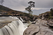Waterfall in the course of the Abhainn an Fhasaigh, Torridon, Wester Ross, Highlands of Scotland. Picture Credit : Stewart Smith / Scottish Viewpoint   Tel: +44 (0) 131 622 7174  E-Mail : info@scottis... Public 2012,winter,lone,tree,scots,pine,cascade,river,flowing,wild,unspoilt,Highland,flow,bur,blurry,atmospheric,walking,hill,hillwalking,hills,mountain,mountains