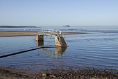 Bridge to Nowhere at Belhaven bay, near Dunbar, with a view to the Bass Rock beyond, East Lothian. Picture Credit : John Pringle / Scottish Viewpoint   Tel: +44 (0) 131 622 7174  E-Mail : info@scottis... Public 2012,spring,sunny,footbridge,tide,tidal,water,coast,coastal,john,muir,country,park,way