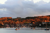 Kirkcudbright, Dumfries and Galloway, Southern Scotland at dusk. Picture Credit : Jason Baxter / Scottish Viewpoint   Tel: +44 (0) 131 622 7174  E-Mail : info@scottishviewpoint.com  This photograph ca... Public 2012,winter,port,harbour,boat,boats,yacht,yachts,sailing,town,light,sunset,scenic,Dee,Estuary,moorings,fishing,solway,firth,atmospheric,trees,woodland,spire,church,masts