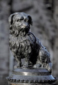 The statue of Greyfriars Bobby commemorating the Skye Terrier that kept watch over his master's grave at the nearby churchyard for 14 years from 1848, in the city centre of Edinburgh. Picture Credit :... Public 2005,sunny,capital,city,attraction,visitor,tourist,old,town,commemorate