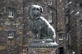 The statue of Greyfriars Bobby commemorating the Skye Terrier that kept watch over his master's grave at the nearby churchyard for 14 years from 1848, in the city centre of Edinburgh. Picture Credit :... Public 2005,winter,weather,snow,capital,city,attraction,visitor,tourist,old,town,commemorate
