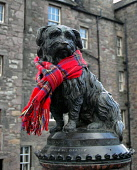 The statue of Greyfriars Bobby adorned with a tartan scarf in the city centre of Edinburgh. Picture Credit : Scott Whitelaw / Scottish Viewpoint   Tel: +44 (0) 131 622 7174  E-Mail : info@scottishview... Public 2013,winter,old town,heritage,attraction,visitor,tourist,commemorate,fun,funny,dog,loyal,candlemaker,row