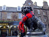 The statue of Greyfriars Bobby adorned with a tartan scarf in the city centre of Edinburgh.Picture Credit : Scott Whitelaw / Scottish Viewpoint  Tel: +44 (0) 131 622 7174 E-Mail : info@scottishviewpoi... Public 2013,winter,old town,heritage,attraction,visitor,tourist,commemorate,fun,funny,dog,loyal,candlemaker,row,bar,pub