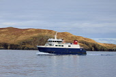 The Shetland Islands Council ferry, MV Linga sails by Hamera Head in Dury Voe, on its journey between Whalsay and Mainland, Shetland. Picture Credit : Graham Uney / Scottish Viewpoint   Tel: +44 (0) 1... Public 2013,winter,isles,isle,island,islands,skwater,calm,coast,coastal,transport,boat,travel