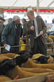 John Jeffery (right) - ex Scotland international rugby player and farmer at the Kelso Ram Sales, Scottish Borders. Picture Credit : Angus Blackburn / Scottish Viewpoint Tel: +44 (0) 131 622 7174   E-M... Public 2011,summer,event,farming,livestock,agriculture,animals,sheep,sale,auction