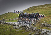 RIders cycle down towards Talla, Tweedsmuir, Scottish Borders during the opening stage of the Tour of Britain.Picture Credit : Angus Blackburn / Scottish ViewpointTel: +44 (0) 131 622 7174  E-Mail : i... Public 2011,summer,event,cycle,cycling,cyclist,cyclists,bike,biking,competition,compete,bicycle,bicycling,race,racing,pro,professional,racers,sport,sporting,lycra,people