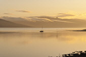 Yacht on Loch Fynne at Inveraray, Argyll. Picture Credit : D. G. Farquhar / Scottish Viewpoint Tel: +44 (0) 131 622 7174   E-Mail : info@scottishviewpoint.com This photograph cannot be used without pr... Public summer,water,reflection,sailing,sunset,atmospheric,evening,light