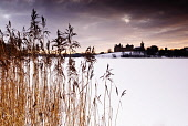 Looking over a frozen Linlithgow Loch to Linlithgow Palace and St Michael's Church, Linlithgow, West Lothian. Picture Credit : David Queenan / Scottish Viewpoint  Tel: +44 (0) 131 622 7174  E-Mail : i... Public 2010,winter,snow,atmospheric,frozen,ice,historic,scotland,attraction,ruin,ruins,religion,spire,reeds,grasses