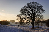 Walking by a frozen Linlithgow Loch with Linlithgow Palace and St Michael's Church visible beyond, Linlithgow, West Lothian. Picture Credit : David Queenan / Scottish Viewpoint  Tel: +44 (0) 131 622 7... Public 2010,winter,snow,atmospheric,frozen,ice,historic,scotland,attraction,ruin,ruins,religion,spire,tree,branches