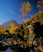 Buchaille Etive Mor, Highlands of Scotland. Picture Credit : Ian Macrae Young / Scottish Viewpoint  Tel: +44 (0) 131 622 7174  E-Mail : info@scottishviewpoint.com  Web: www.scottishviewpoint.com This... Public autumn,autumnal,sunny,atmospheric,mountain,mountains,munro,river,trees