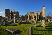 Elgin Cathedral, Moray. Picture Credit : D Barnes / Scottish Viewpoint  Tel: +44 (0) 131 622 7174  E-Mail : info@scottishviewpoint.com  Web: www.scottishviewpoint.com This photograph cannot be used wi... Public 2012,winter,sunny,attraction,visitor,building,ruin,ruins,graveyard,graves,gravestones,religion