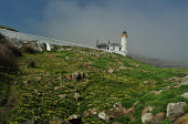 The Low Light lighthouse on the Isle of May - the island can be reached during the Summer months on the May Princess sailing from Anstruther, East Neuk of Fife. Picture Credit : Jack Byers / Scottish... Public 2012,sunny,weather,fog,mist,misty,haar,atmospheric,firth,forth,building,light,house,path,people