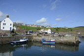 The harbour at St Abbs, Scottish Borders. Picture Credit : Chris Robson / Scottish Viewpoint  Tel: +44 (0) 131 622 7174  E-Mail : info@scottishviewpoint.com  Web: www.scottishviewpoint.com This photog... Public 2012,summer,sunny,coast,coastal,water,boat,boats,fishing,village