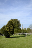 Looking over the cemetery to the spire of the former West Church, Dalkeith, Midlothian. Picture Credit : Chris Robson / Scottish Viewpoint  Tel: +44 (0) 131 622 7174  E-Mail : info@scottishviewpoint.c... Public, NMR 2012,summer,sunny,grave,yard,graveyard,graves