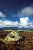 Clachnaben from Scolty Hill, Banchory, Aberdeenshire. Picture Credit : Keith Fergus / Scottish Viewpoint  Tel: +44 (0) 131 622 7174  E-Mail : info@scottishviewpoint.com  Web: www.scottishviewpoint.com... Public 2012,spring,sunny,walking,walk,heather,moorland,clouds,hills