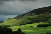 A remote rural valley in the parish of Tweeddale looking down towards Drumelzier below the hill called Finglen Rig on a stormy summers day, Scottish Borders. Picture Credit : Jason Baxter / Scottish V... Public 2012,summer,countryside,farming,land,hills,hillside,sheep,scenic,landscape,farmland,livestock,stormy,clouds,weather