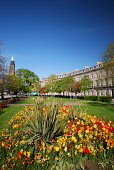 Atholl Crescent in the city centre of Edinburgh. Picture Credit : Neil Sinclair / Scottish Viewpoint  Tel: +44 (0) 131 622 7174  E-Mail : info@scottishviewpoint.com  Web: www.scottishviewpoint.com Thi... Public 2012,summer,sunny,building,architecture,new,town,west,end,westend,flowers,floral,display,shandwick,place