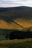 Summer evening light over hills near St Marys Loch in the Scottish Borders. Picture Credit : Jason Baxter / Scottish Viewpoint   Tel: +44 (0) 131 622 7174  E-Mail : info@scottishviewpoint.com  This ph... Public 2012,sunset,evening,mellow,rural,countryside,scenic,ray,moody,atmospheric,farm,hill,forestry